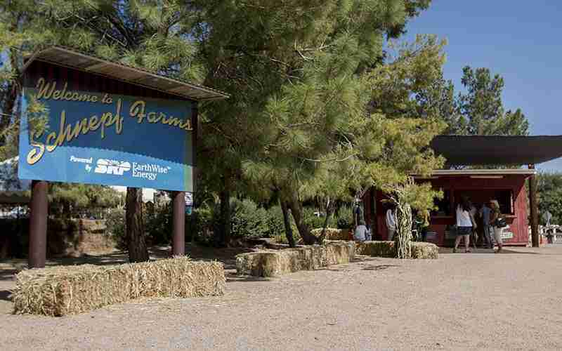 Top Attractions in Queen Creek and San Tan Valley